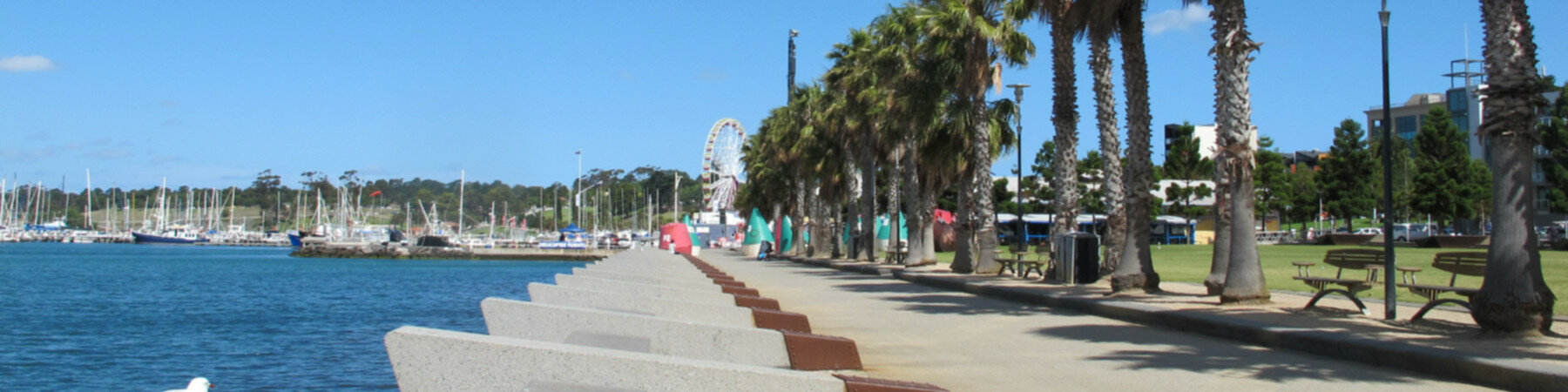 Geelong Stargate Alliance